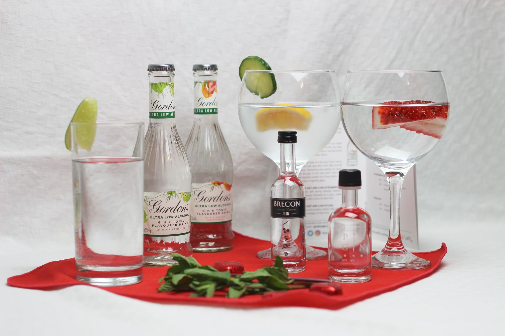 ILoveGin DryGINuary Box - Gordon's G&T bottles on a white background, two gin glasses and two bottles of gin