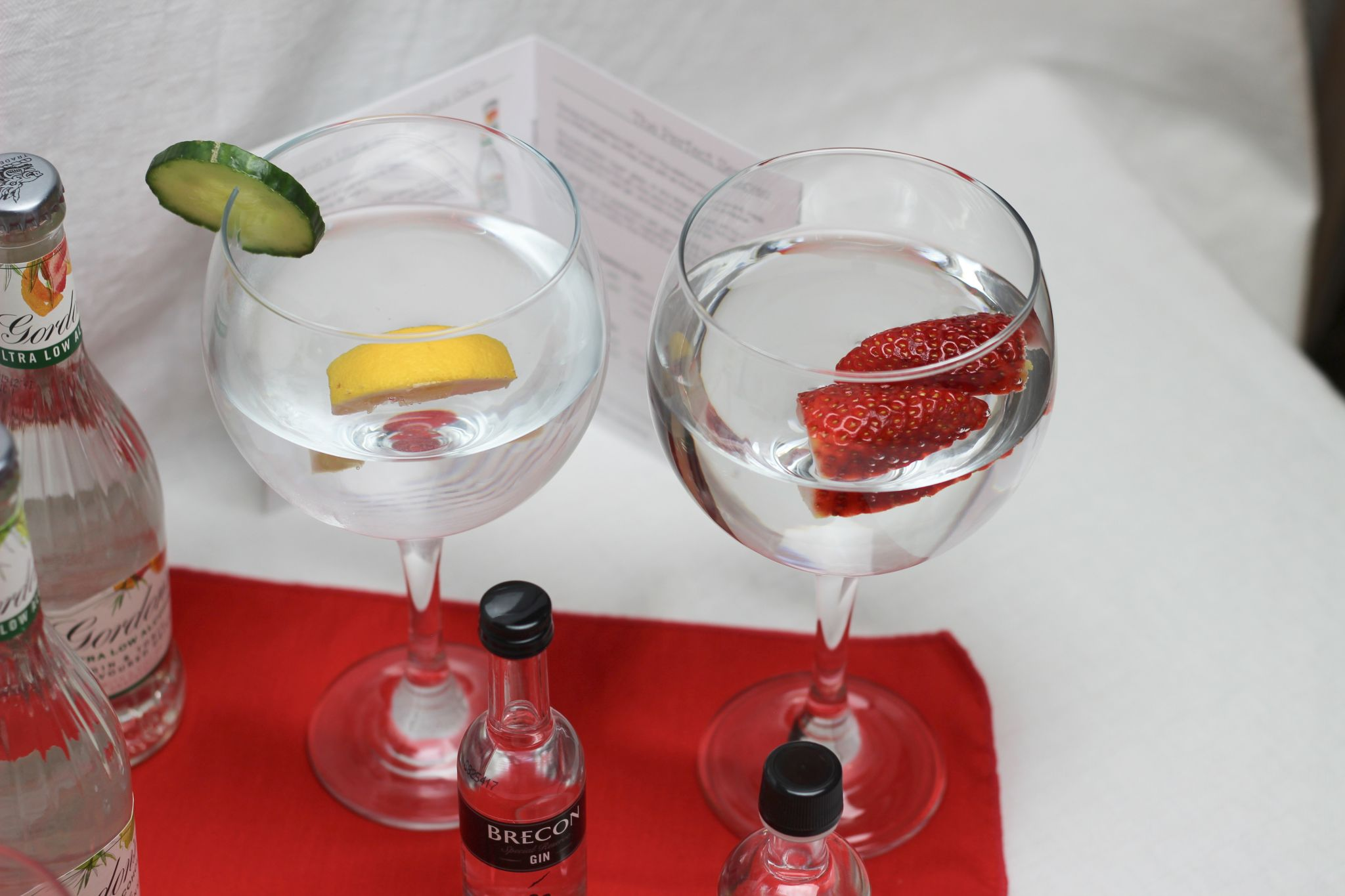 ILoveGin DryGINuary Box - Two gin glasses, one with a lemon wedge, one with strawberries