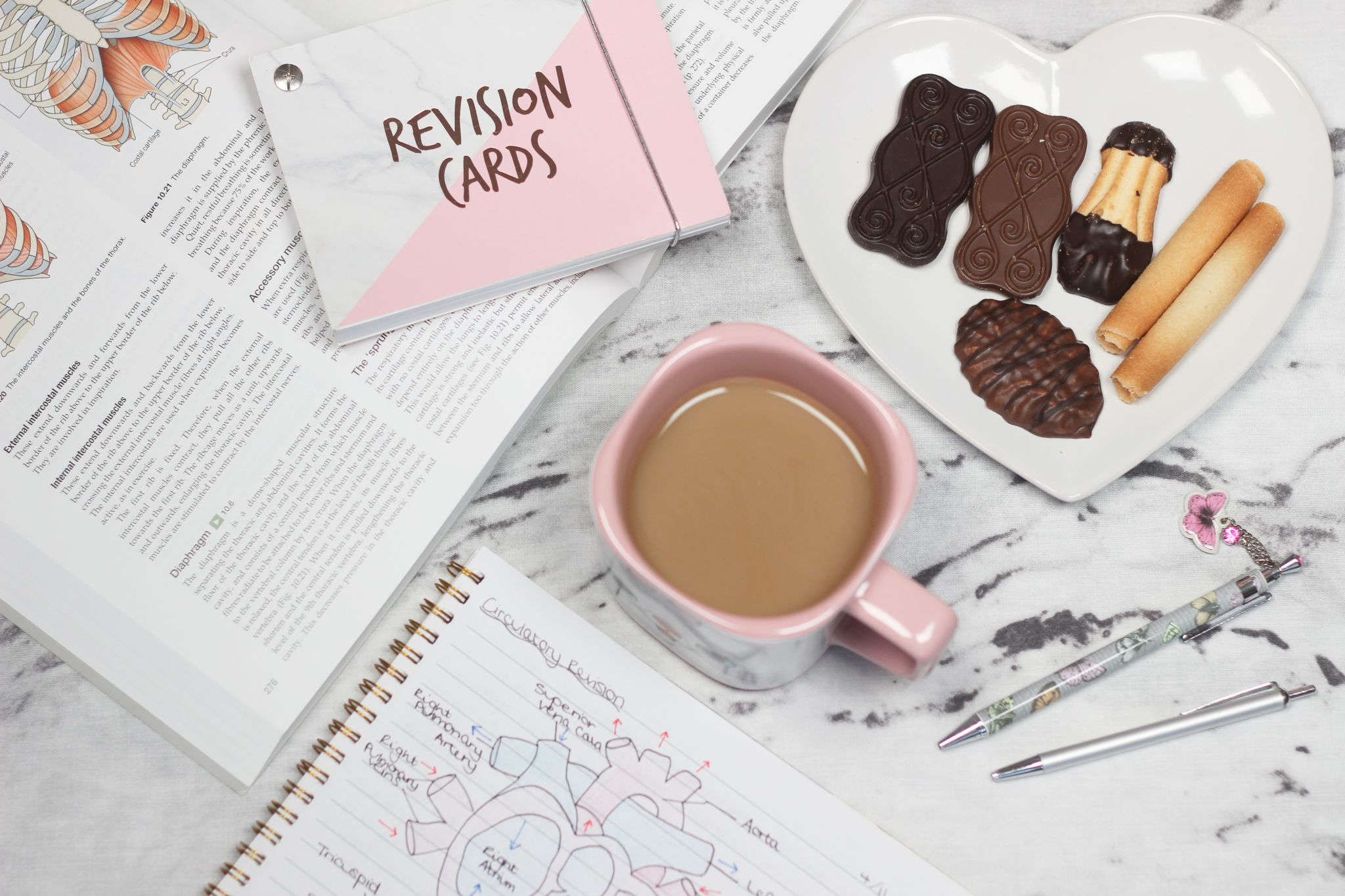 Student Midwife Revision Cards, Coffee and Biscuits