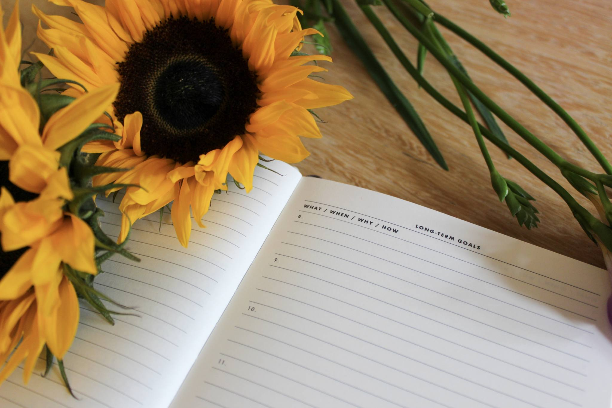 Daily Goal Setter Planner page with Sunflowers and Purple Freesias