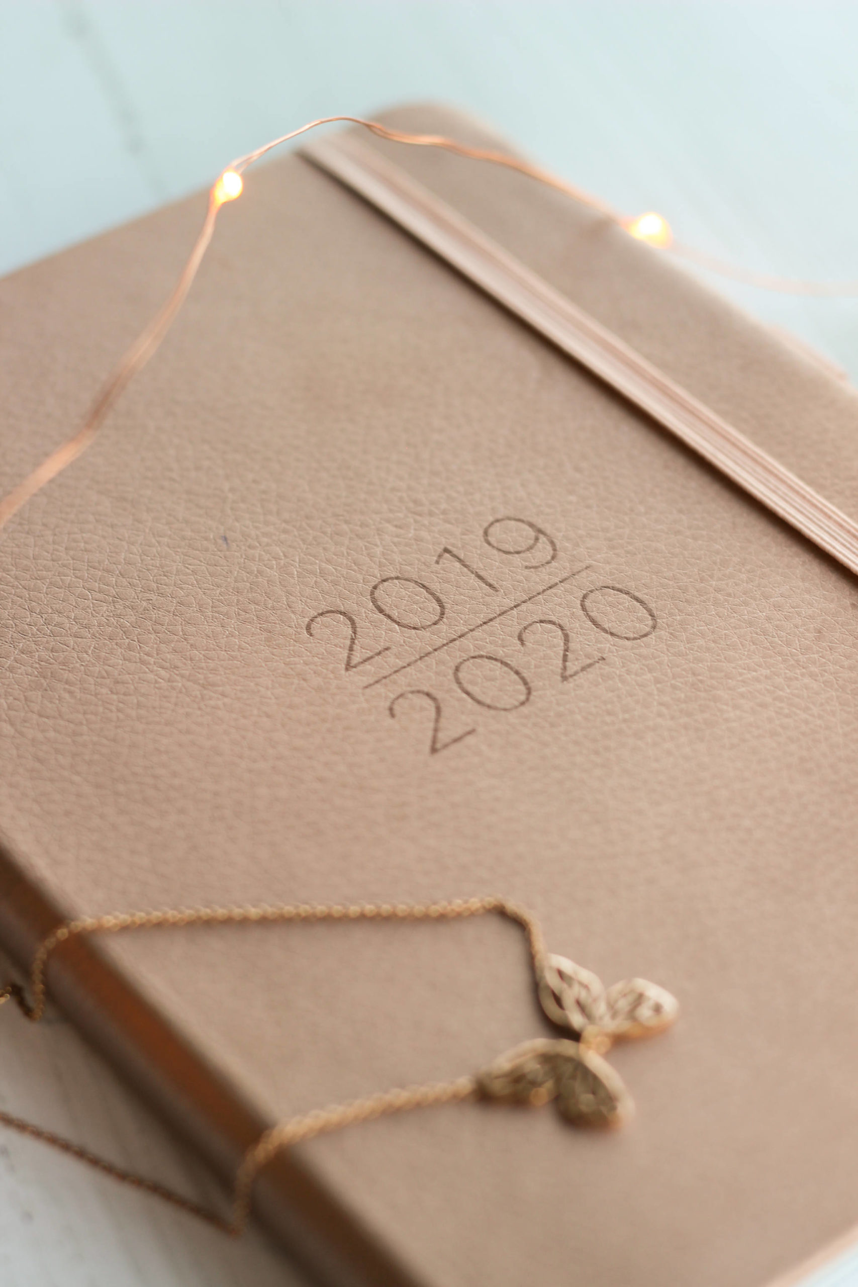 2019/2020 Rose Gold Diary, With Rose Gold lights and necklace
